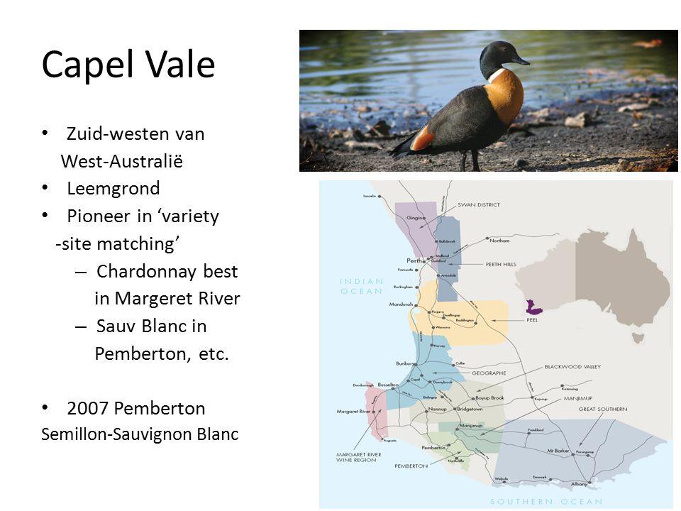 Capel Vale Zuid-westen van West-Australië Leemgrond Pioneer in 'variety -site matching' – Chardonnay best in Margeret River – Sauv Blanc in Pemberton, etc.