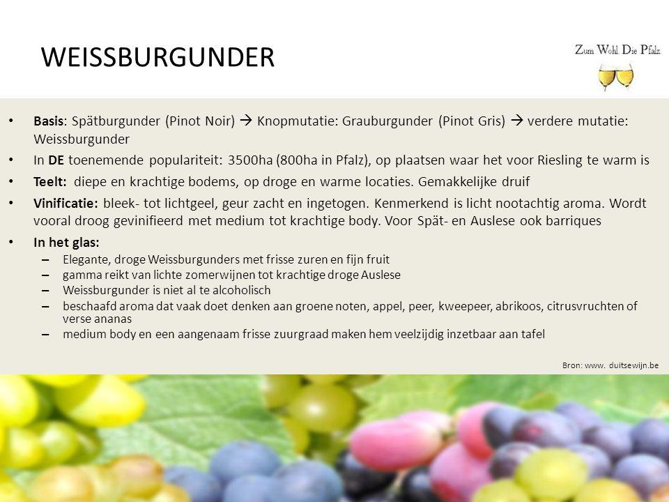 WEISSBURGUNDER Bron: www. duitsewijn.be Basis: Spätburgunder (Pinot Noir)  Knopmutatie: Grauburgunder (Pinot Gris)  verdere mutatie: Weissburgunder