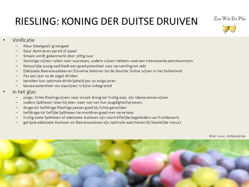 RIESLING: KONING DER DUITSE DRUIVEN Bron: www. duitsewijn.be Vinificatie – Kleur bleekgeel/ groengeel – Geur domineren perzik of appel – Smaak wordt g