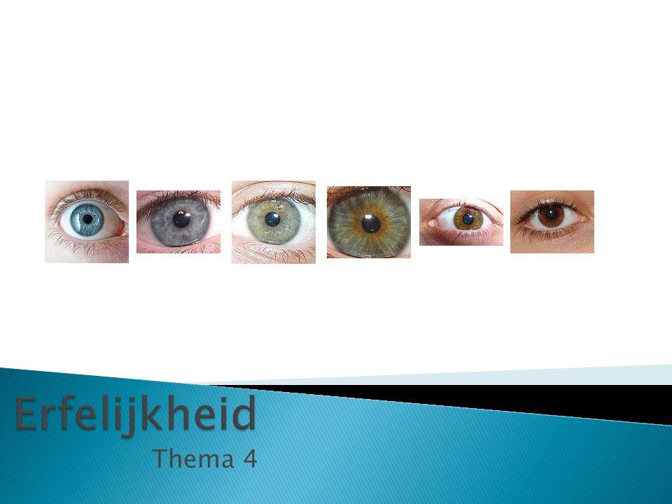 Leonardo di Caprio = homozygoot & recessief voor blauwe ogen = aa Natalie Portman = homozygoot of heterozygoot & dominant voor bruine ogen = Aa of AA