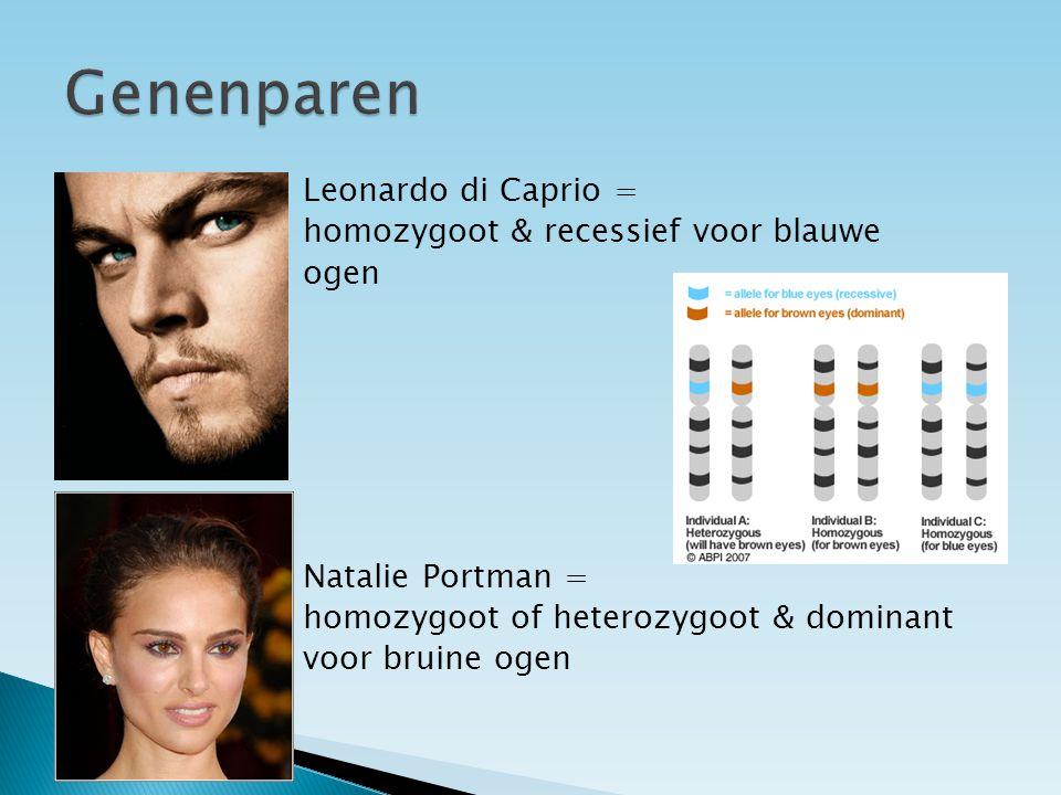 Leonardo di Caprio = homozygoot & recessief voor blauwe ogen Natalie Portman = homozygoot of heterozygoot & dominant voor bruine ogen