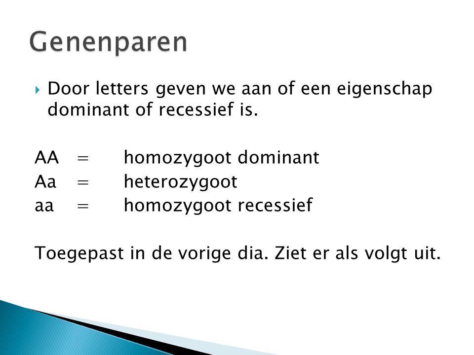  Door letters geven we aan of een eigenschap dominant of recessief is.