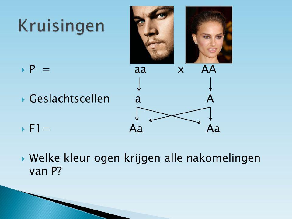  Geslachtscellen a A  F1= Aa Aa  Welke kleur ogen krijgen alle nakomelingen van P?