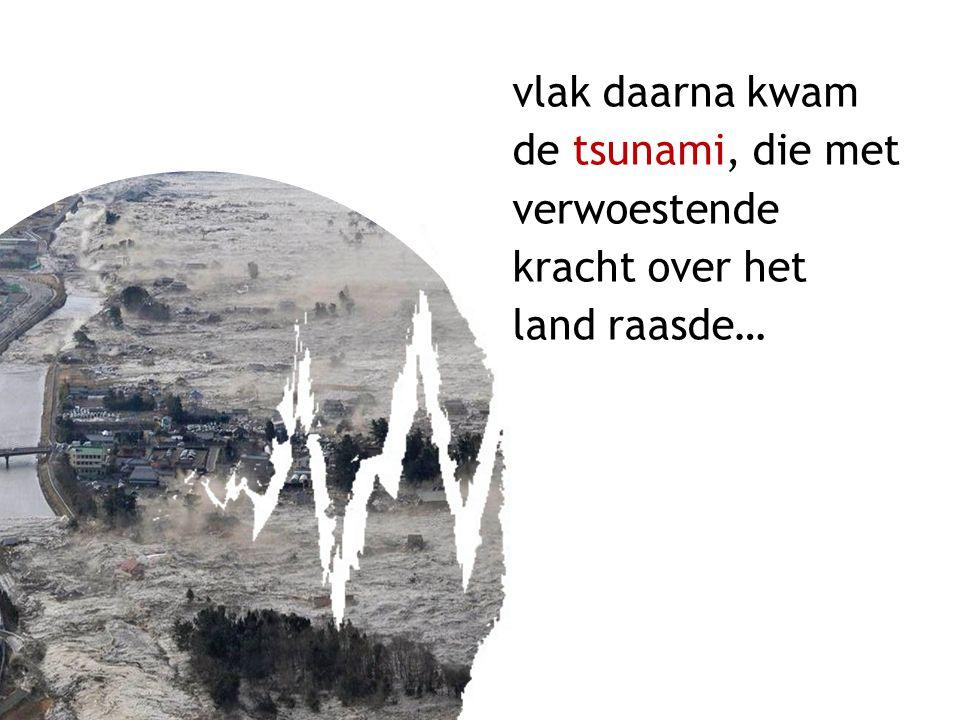 vlak daarna kwam de tsunami, die met verwoestende kracht over het land raasde…