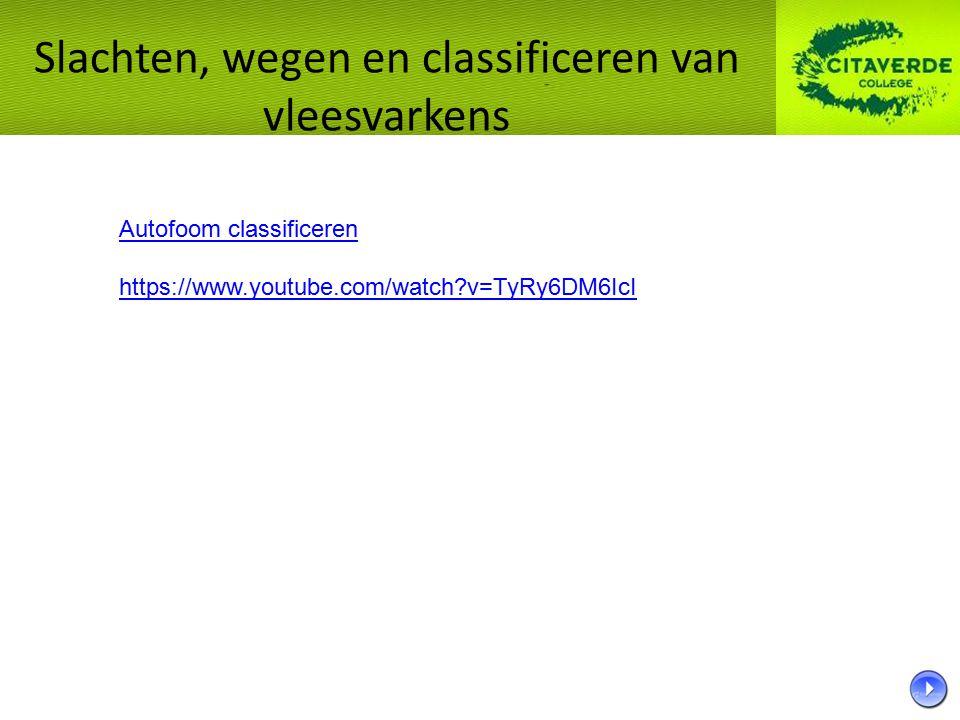 Autofoom classificeren https://www.youtube.com/watch?v=TyRy6DM6IcI