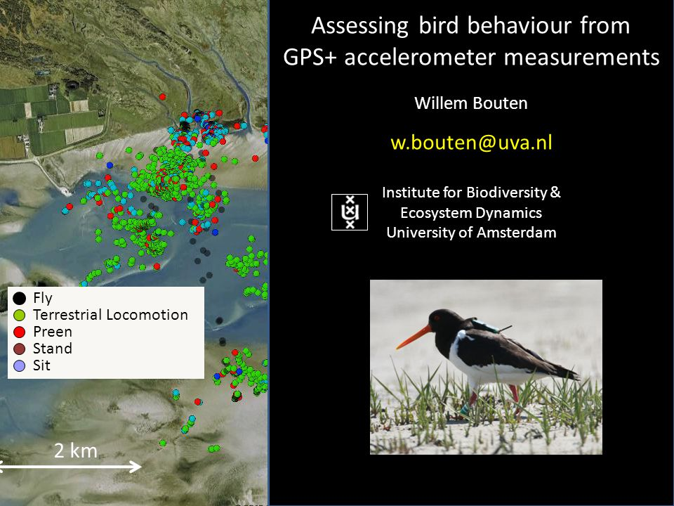 2 km Fly Terrestrial Locomotion Preen Stand Sit Assessing bird behaviour from GPS+ accelerometer measurements Willem Bouten w.bouten@uva.nl Institute