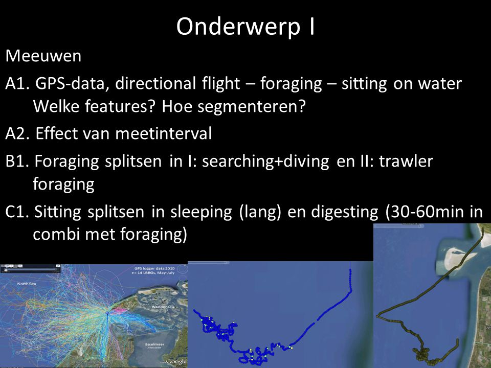 Onderwerp I Meeuwen A1. GPS-data, directional flight – foraging – sitting on water Welke features? Hoe segmenteren? A2. Effect van meetinterval B1. Fo