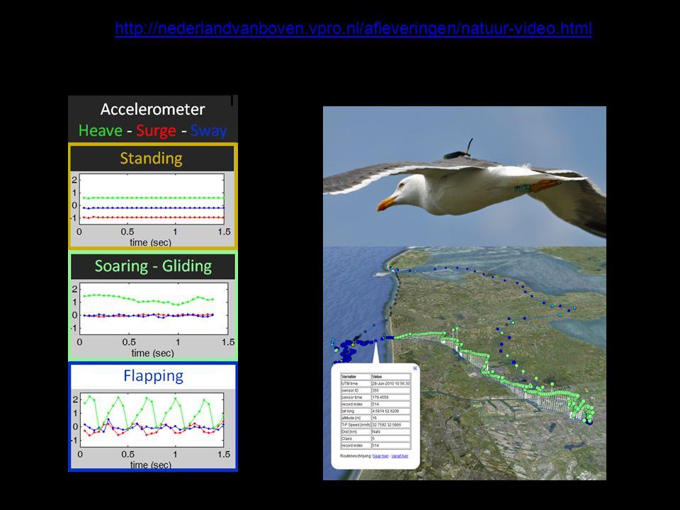 Onderwerp I Meeuwen A1.GPS-data, directional flight – foraging – sitting on water Welke features.