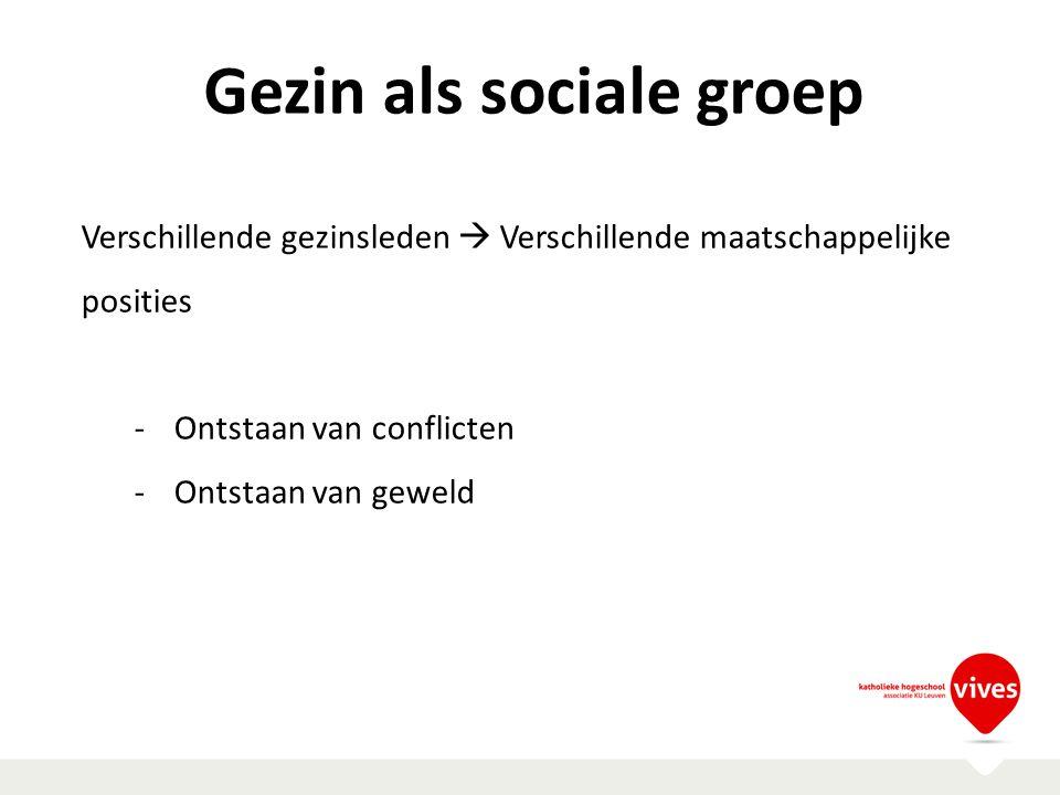 Gezin als sociale groep Verschillende gezinsleden  Verschillende maatschappelijke posities -Ontstaan van conflicten -Ontstaan van geweld