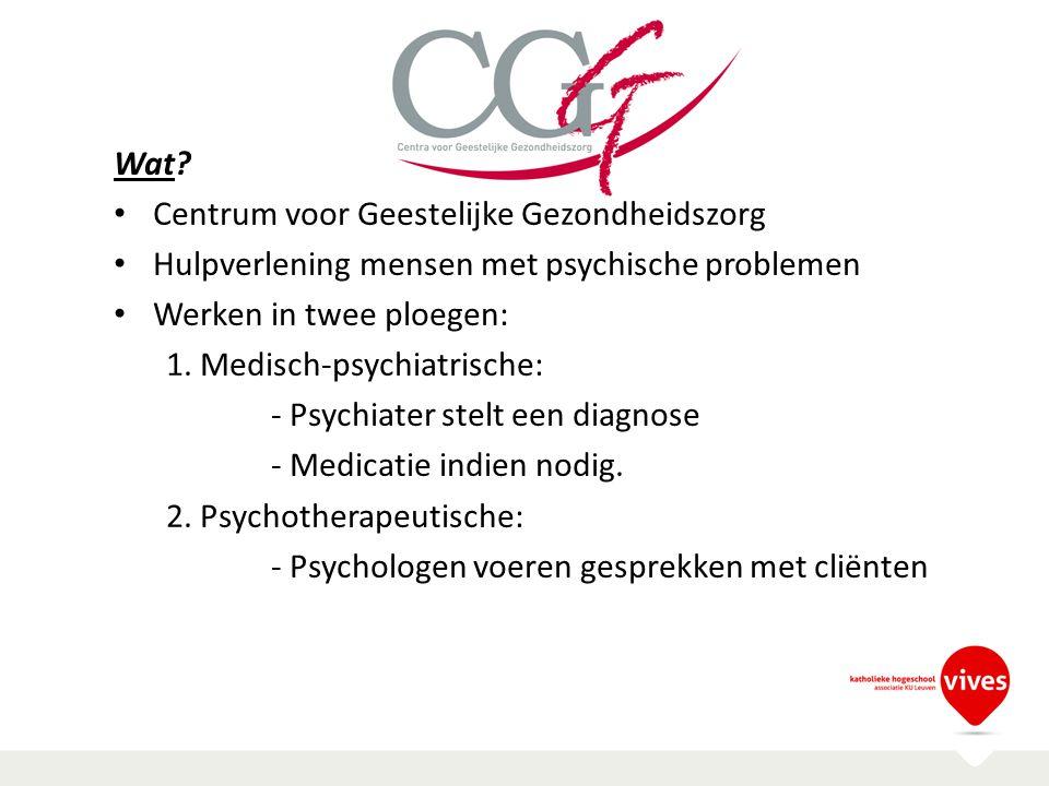 Wat? Centrum voor Geestelijke Gezondheidszorg Hulpverlening mensen met psychische problemen Werken in twee ploegen: 1. Medisch-psychiatrische: - Psych