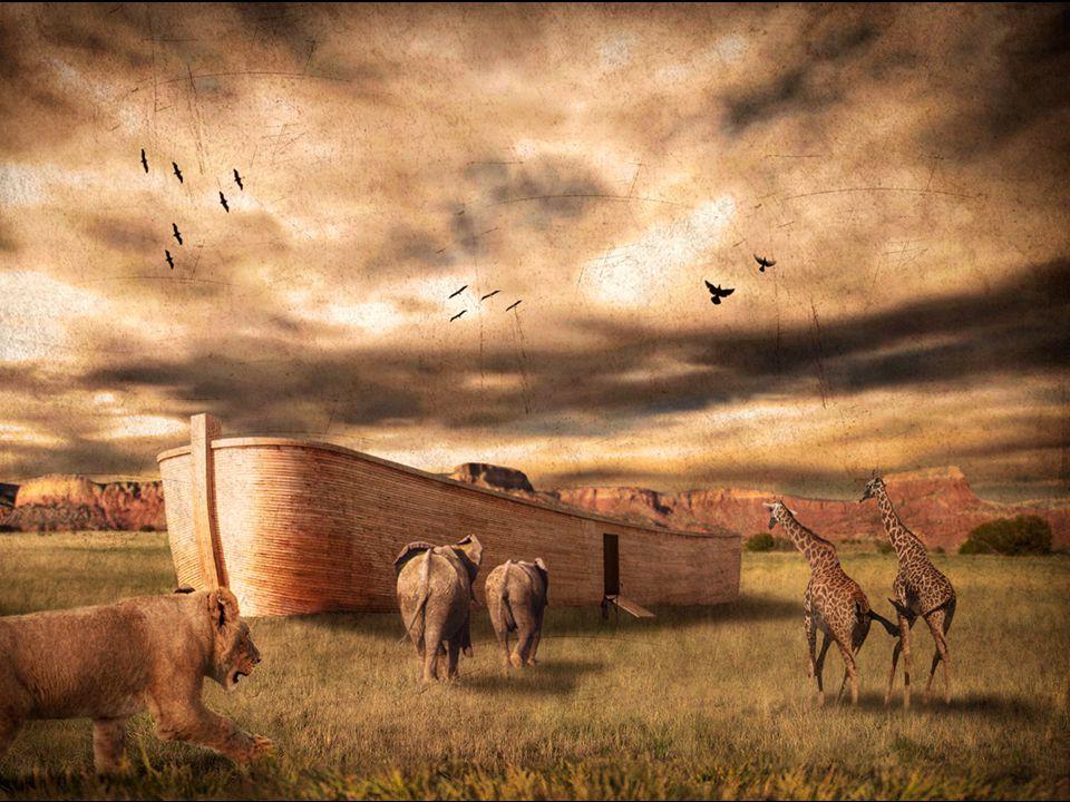 Genesis 6: 15 En zo zult gij haar maken: driehonderd el zal de lengte der ark zijn, vijftig el haar breedte en dertig el haar hoogte.