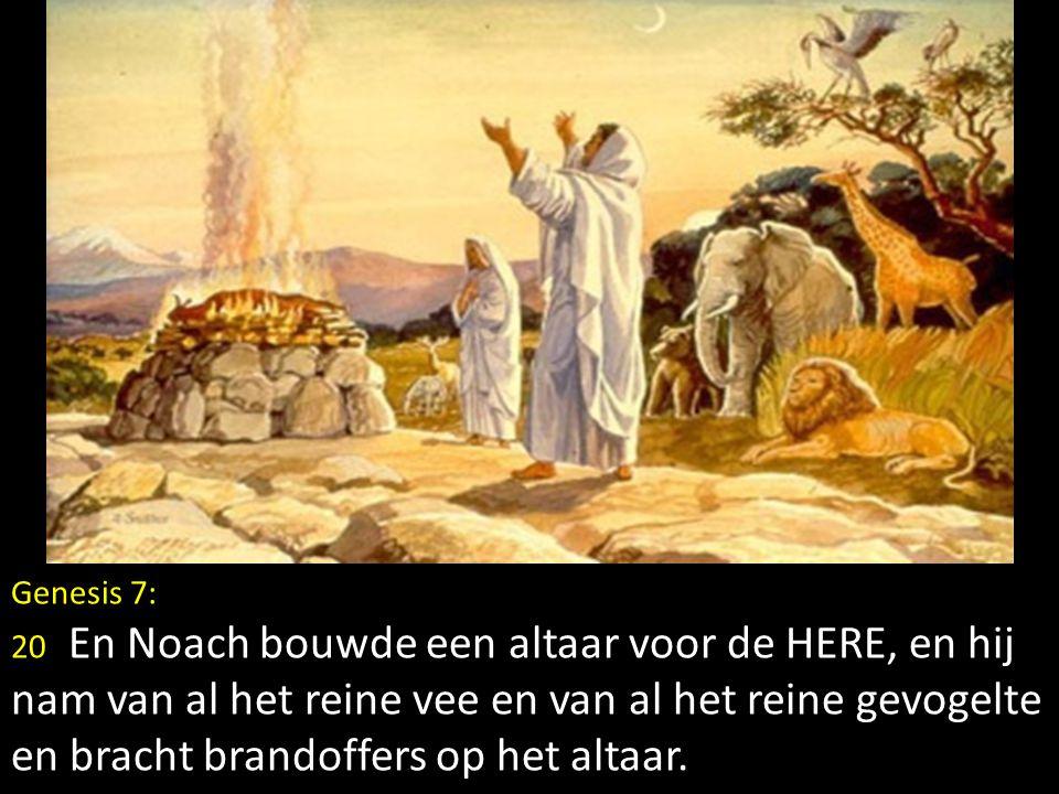 Genesis 7: 20 En Noach bouwde een altaar voor de HERE, en hij nam van al het reine vee en van al het reine gevogelte en bracht brandoffers op het alta