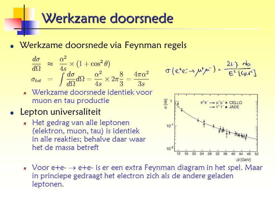 Werkzame doorsnede Werkzame doorsnede via Feynman regels Werkzame doorsnede identiek voor muon en tau productie Lepton universaliteit Het gedrag van a