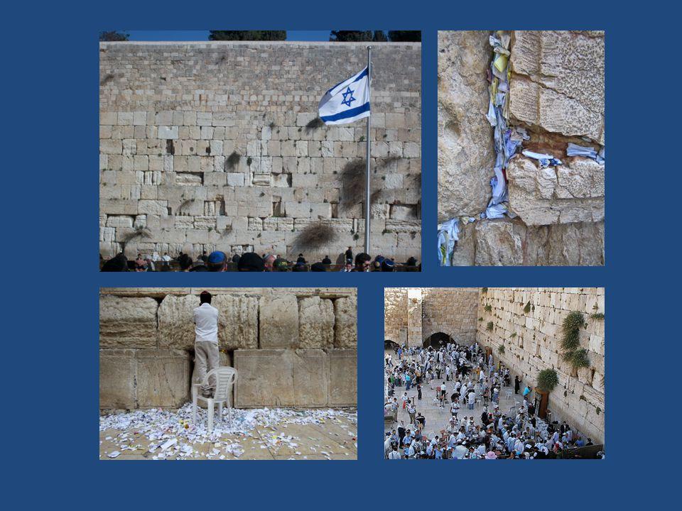 Tempelberg De Tempelberg of de berg Moria is een heuvel in het oosten van de oude stad van Jeruzalem.