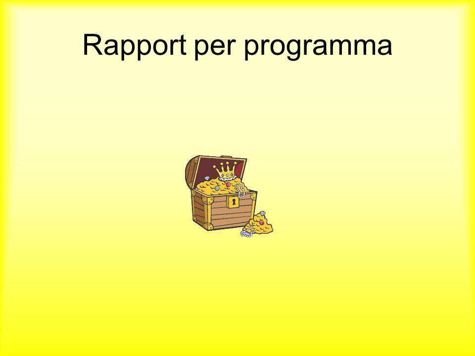 Rapport per programma