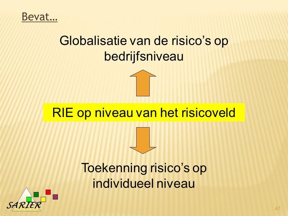 SARIER 47 RIE op niveau van het risicoveld Globalisatie van de risico's op bedrijfsniveau Toekenning risico's op individueel niveau Bevat…