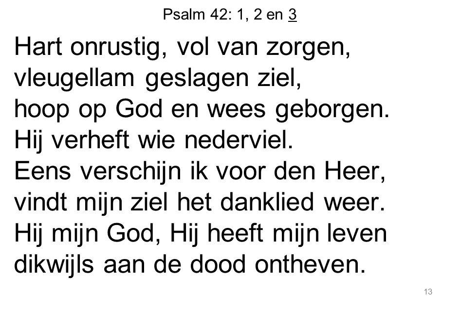 Psalm 42: 1, 2 en 3 Hart onrustig, vol van zorgen, vleugellam geslagen ziel, hoop op God en wees geborgen. Hij verheft wie nederviel. Eens verschijn i