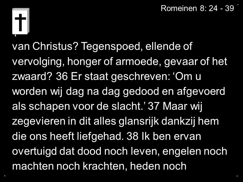 ....Romeinen 8: 24 - 39 van Christus.