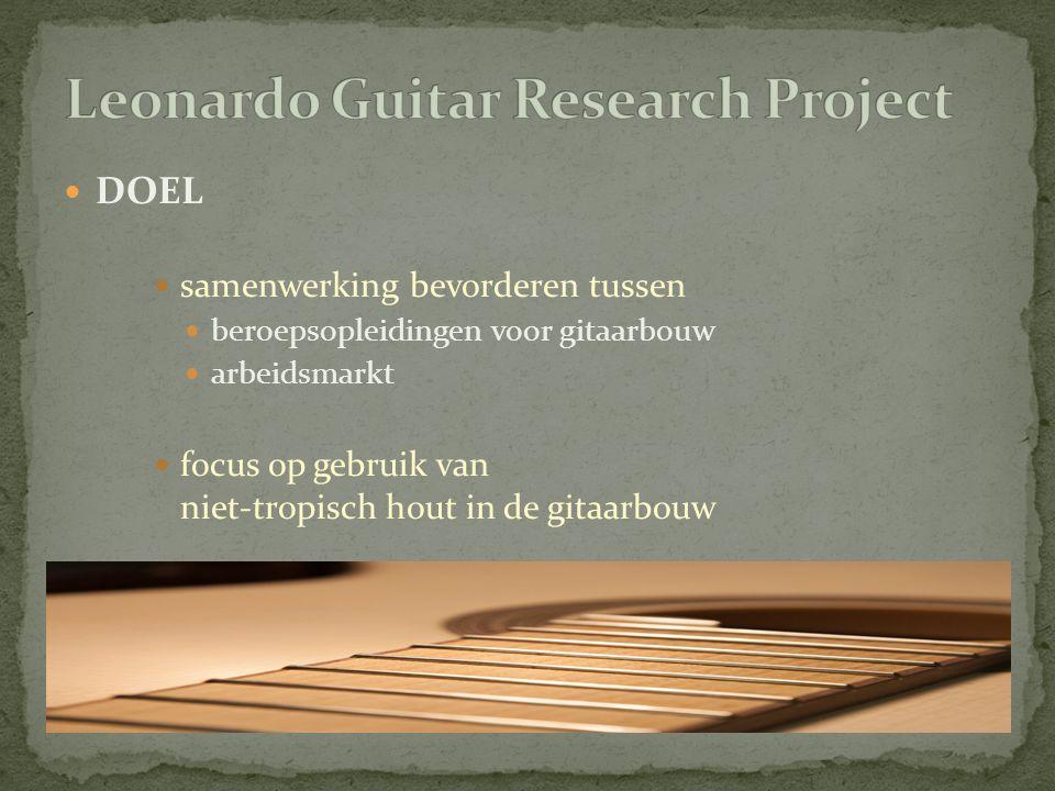 onderwijscurriculum voor gitaarbouw relevanter maken voor toekomstige behoeften van gitaarbouwers nieuwe lesmethodes nieuw studiemateriaal netwerk van gitaarbouwers creëren rond gebruik van niet-tropisch hout bevoorradingszekerheid creëren van niet-tropische houtsoorten voor gitaarbouw