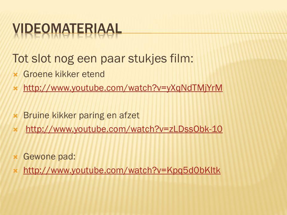 Tot slot nog een paar stukjes film:  Groene kikker etend  http://www.youtube.com/watch?v=yXqNdTMjYrM http://www.youtube.com/watch?v=yXqNdTMjYrM  Br