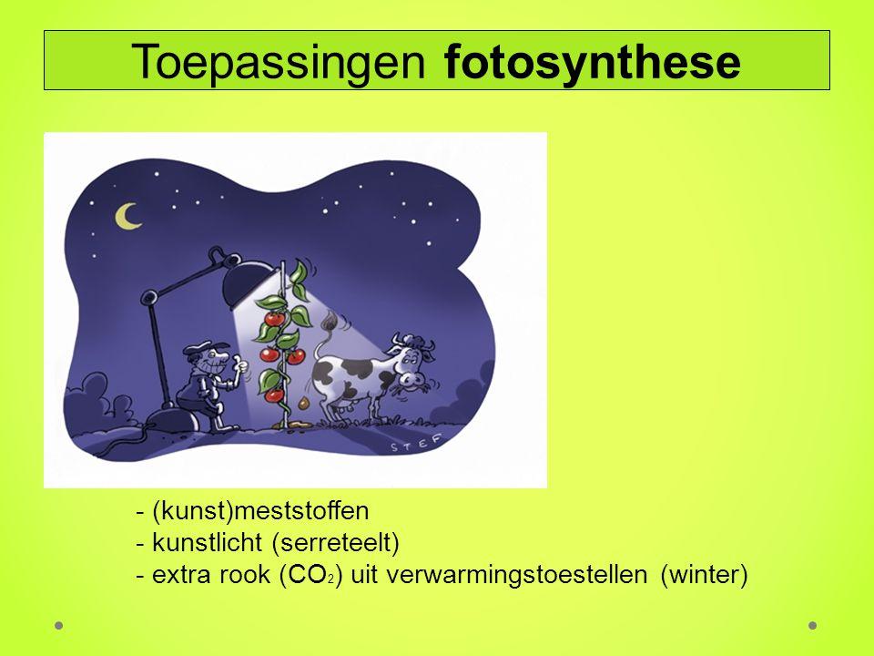 - (kunst)meststoffen - kunstlicht (serreteelt) - extra rook (CO 2 ) uit verwarmingstoestellen (winter) Toepassingen fotosynthese