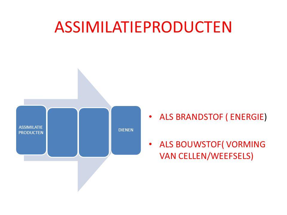 ASSIMILATIEPRODUCTEN DIENEN ALS BRANDSTOF ( ENERGIE) ALS BOUWSTOF( VORMING VAN CELLEN/WEEFSELS)