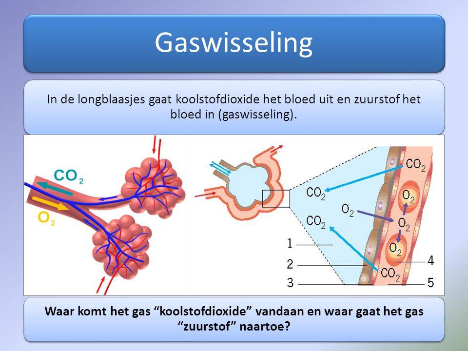 "Gaswisseling In de longblaasjes gaat koolstofdioxide het bloed uit en zuurstof het bloed in (gaswisseling). Waar komt het gas ""koolstofdioxide"" vandaa"