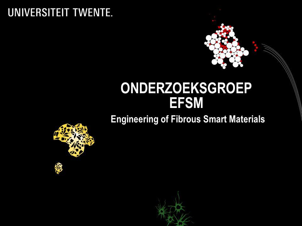 ONDERZOEKSGROEP EFSM Engineering of Fibrous Smart Materials