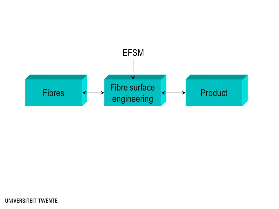 Fibres Fibre surface engineering Product EFSM