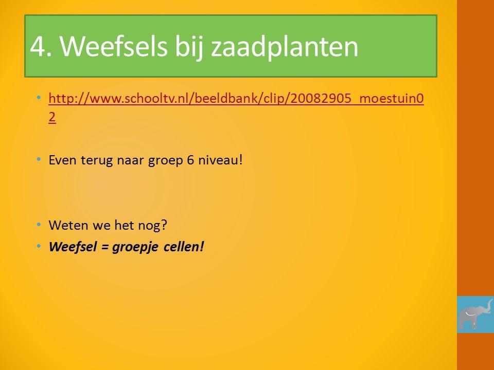 4. Weefsels bij zaadplanten http://www.schooltv.nl/beeldbank/clip/20082905_moestuin0 2 http://www.schooltv.nl/beeldbank/clip/20082905_moestuin0 2 Even