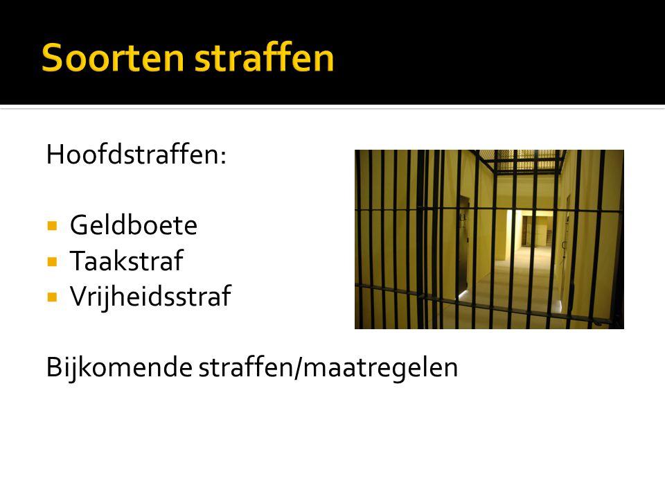 Hoofdstraffen:  Geldboete  Taakstraf  Vrijheidsstraf Bijkomende straffen/maatregelen