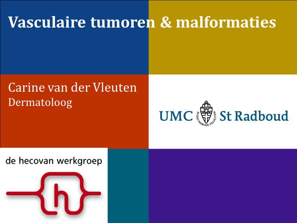 Vasculaire tumoren & malformaties Carine van der Vleuten Dermatoloog