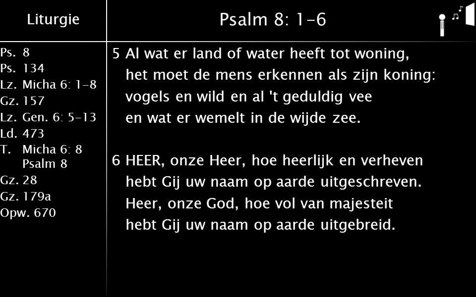 Liturgie Ps.8 Ps.134 Lz.Micha 6: 1-8 Gz.157 Lz.Gen. 6: 5-13 Ld.473 T.Micha 6: 8 Psalm 8 Gz.28 Gz.179a Opw.670 Psalm 8: 1-6 5Al wat er land of water he