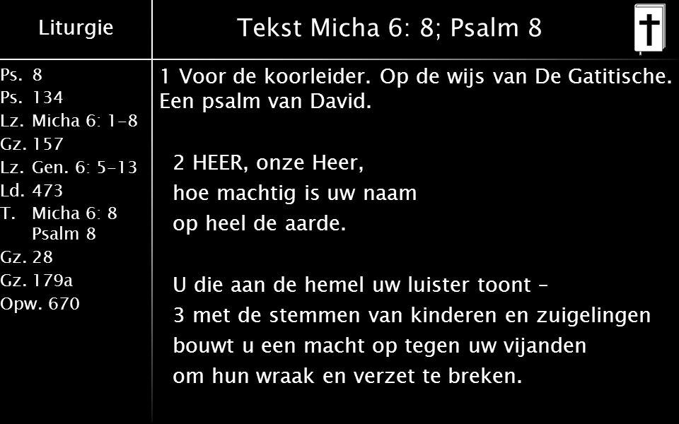 Liturgie Ps.8 Ps.134 Lz.Micha 6: 1-8 Gz.157 Lz.Gen. 6: 5-13 Ld.473 T.Micha 6: 8 Psalm 8 Gz.28 Gz.179a Opw.670 Tekst Micha 6: 8; Psalm 8 1 Voor de koor