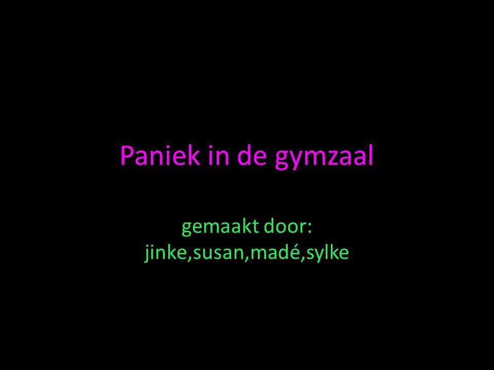 Paniek in de gymzaal gemaakt door: jinke,susan,madé,sylke