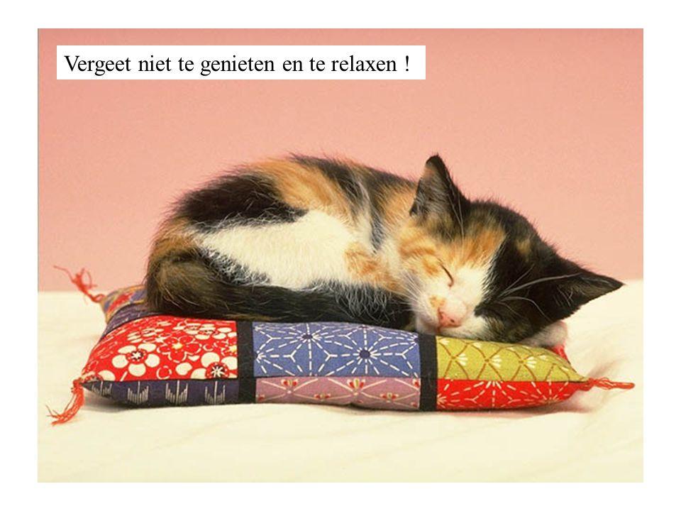 Vergeet niet te genieten en te relaxen !