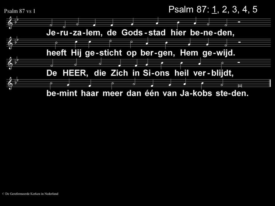Psalm 87: 1, 2, 3, 4, 5