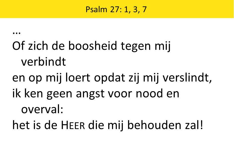 3 Hoe heeft Hij mij ten dage van het kwade verborgen in het binnenst van zijn hut: geen vijandschap ter wereld kon mij schaden, de schaduw van zijn wolk heeft mij beschut….