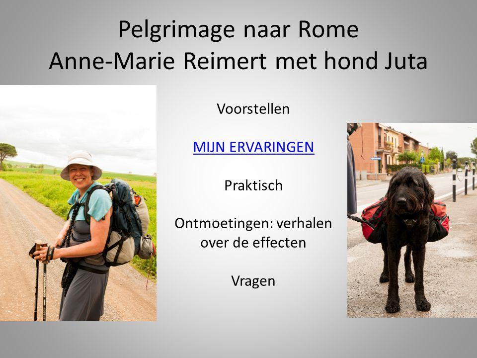 Pelgrimage naar Rome Anne-Marie Reimert met hond Juta Voorstellen MIJN ERVARINGEN Praktisch Ontmoetingen: verhalen over de effecten Vragen