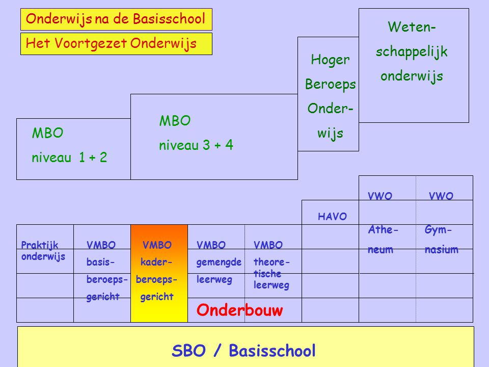 MBO niveau 3 + 4 Hoger Beroeps Onder- wijs Weten- schappelijk onderwijs MBO niveau 1 + 2 Onderwijs na de Basisschool Het Voortgezet Onderwijs SBO / Ba