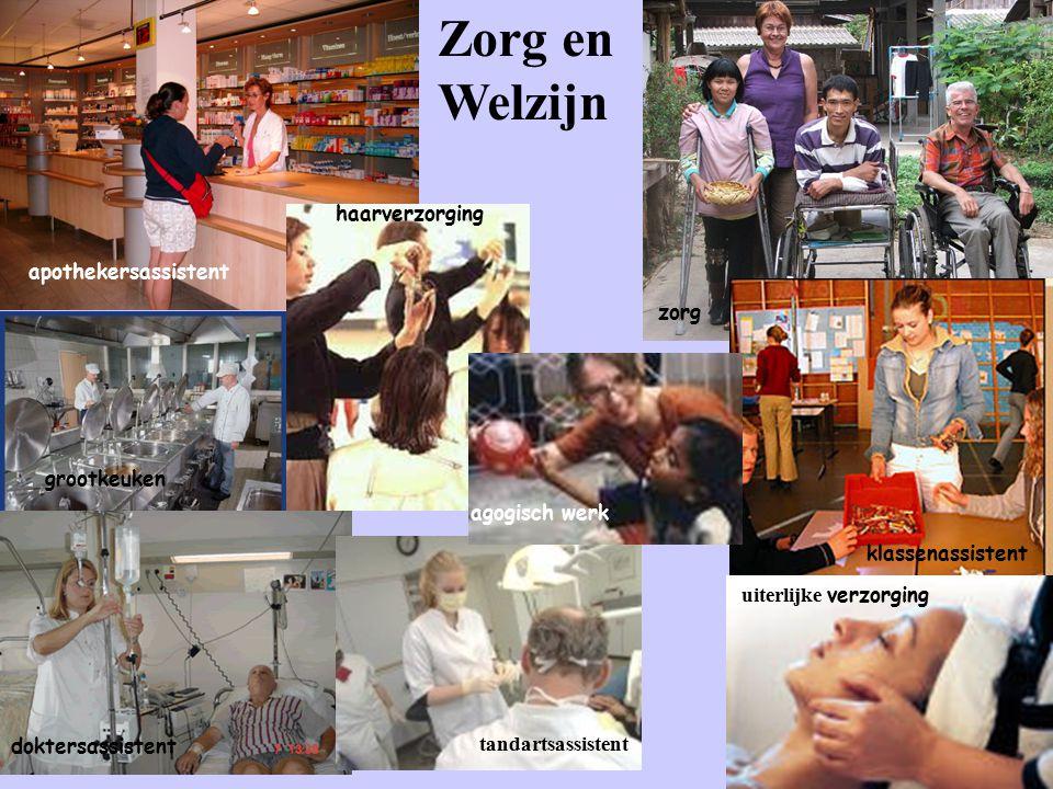 Zorg en Welzijn apothekersassistent haarverzorging zorg agogisch werk klassenassistent uiterlijke verzorging tandartsassistent doktersassistent grootkeuken
