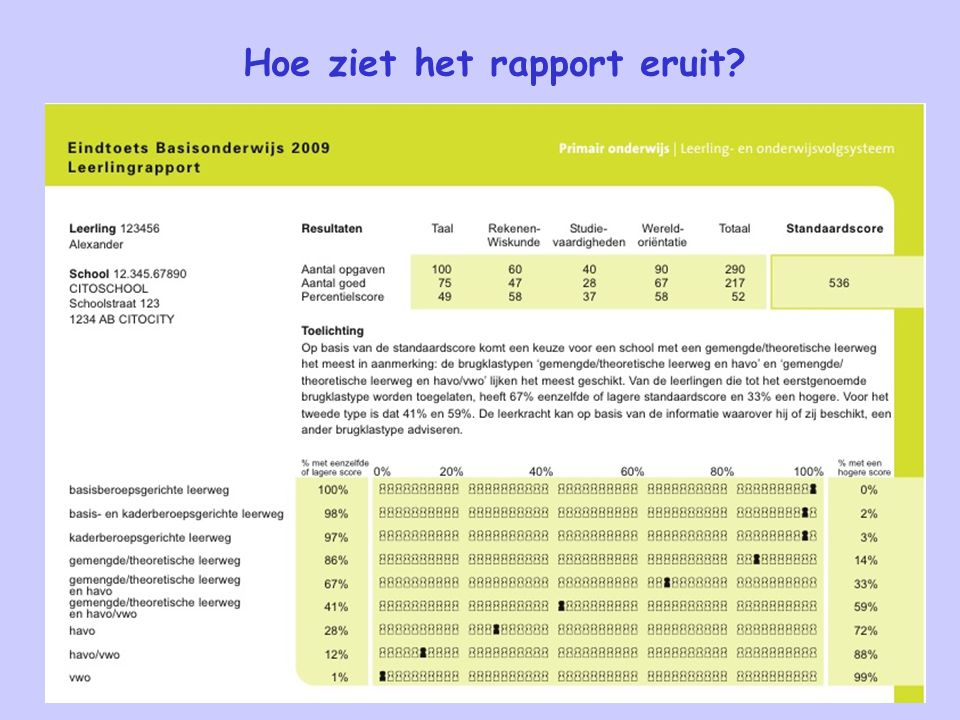 Hoe ziet het rapport eruit?