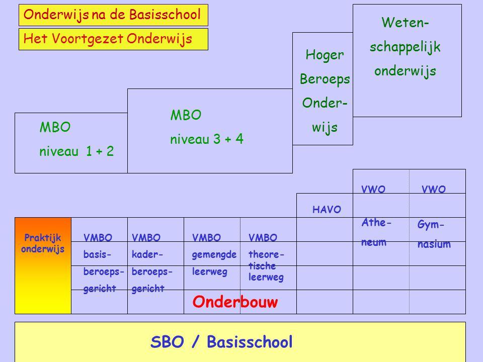 Het VMBO na leerjaar 2 of 3 De leerlingen kiezen na de onderbouw uit de volgende 4 sectoren: LandbouwEconomieZorg en welzijn Techniek