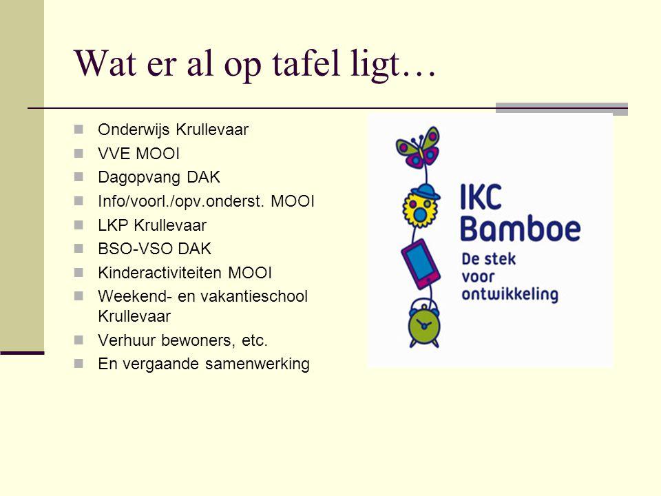 Wat er al op tafel ligt… Onderwijs Krullevaar VVE MOOI Dagopvang DAK Info/voorl./opv.onderst.