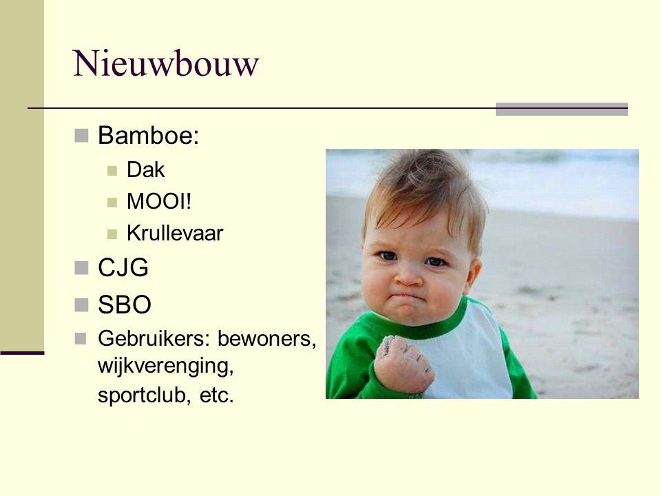 Nieuwbouw Bamboe: Dak MOOI! Krullevaar CJG SBO Gebruikers: bewoners, wijkverenging, sportclub, etc.