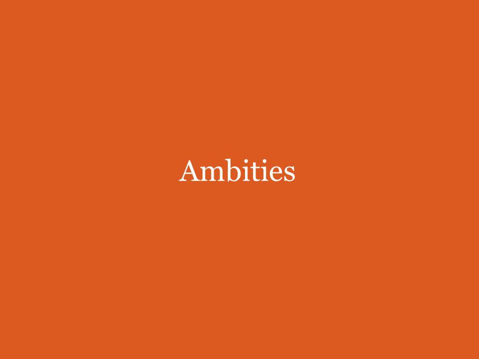 Ambities Metameer 1.