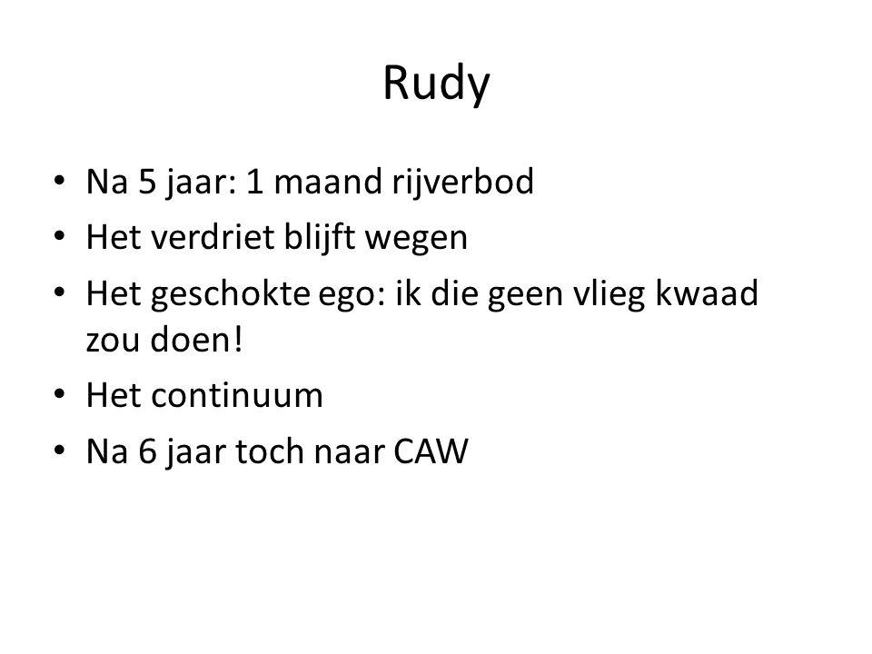 Rudy Na 5 jaar: 1 maand rijverbod Het verdriet blijft wegen Het geschokte ego: ik die geen vlieg kwaad zou doen! Het continuum Na 6 jaar toch naar CAW