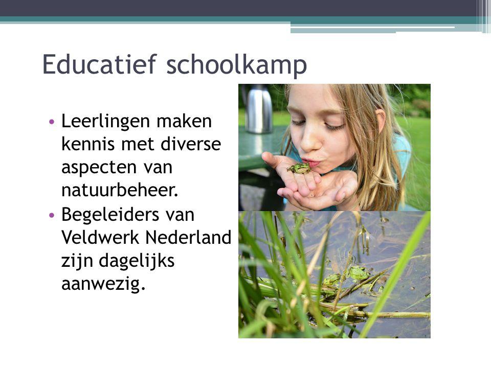 Educatief schoolkamp Leerlingen maken kennis met diverse aspecten van natuurbeheer. Begeleiders van Veldwerk Nederland zijn dagelijks aanwezig.