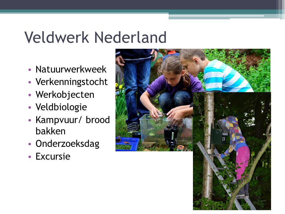 Veldwerk Nederland Natuurwerkweek Verkenningstocht Werkobjecten Veldbiologie Kampvuur/ brood bakken Onderzoeksdag Excursie