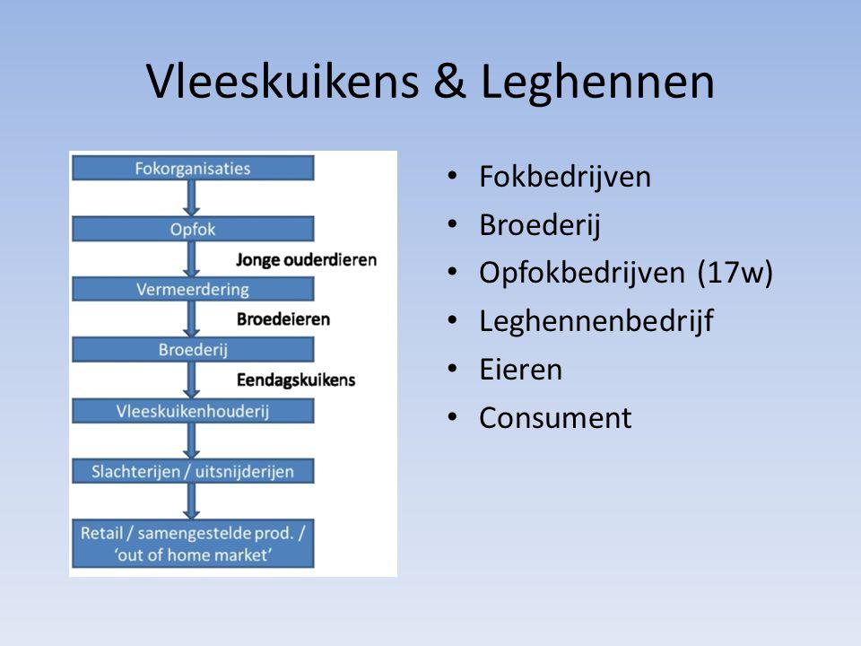 Vleeskuikens & Leghennen Fokbedrijven Broederij Opfokbedrijven (17w) Leghennenbedrijf Eieren Consument